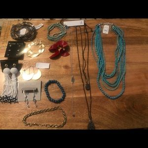 Bundle of necklaces earrings and bracelets